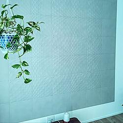観葉植物/エコカラットプラス/壁/天井のインテリア実例 - 2021-04-10 08:15:02