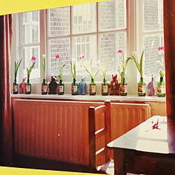 椅子/テーブル/上げ下げ窓/セントラルヒーティング/花瓶...などのインテリア実例 - 2021-01-01 18:46:34
