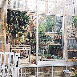うちじゃない/SOLSO FARM/植物屋のインテリア実例 - 2013-09-01 09:05:38