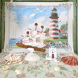 棚/コレクションケースの中/夏のディスプレイ/海を感じるインテリア/貝殻の船...などのインテリア実例 - 2020-07-12 19:42:51