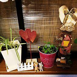 ベルメゾン/観葉植物/セリア雑貨/リビング/カントリー雑貨...などのインテリア実例 - 2017-04-10 22:39:46