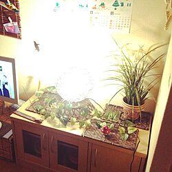 リビング/ハンドメイド/IKEA/雑貨/観葉植物...などのインテリア実例 - 2015-09-09 22:44:22