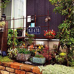 玄関/入り口/植物/ナンバープレート/IKEA/お庭のインテリア実例 - 2015-11-09 09:09:37