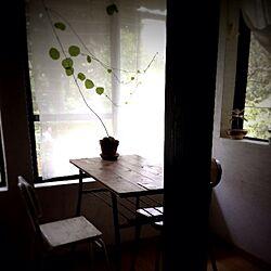 お出かけ/隠れ家カフェのインテリア実例 - 2013-06-30 06:51:15