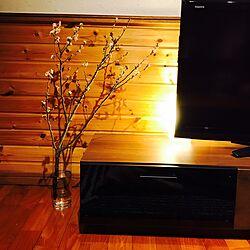 壁/天井/テレビボード横/桜の切り花のインテリア実例 - 2017-04-02 20:03:53