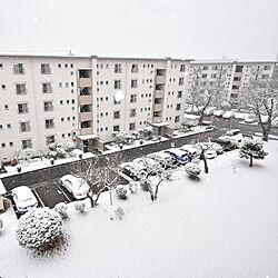 部屋全体/雪/ベランダからの景色/リノベーション/賃貸...などのインテリア実例 - 2019-02-12 06:56:41