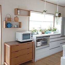 キッチン/ホワイト×ウッド×グリーン/2019.7.9のインテリア実例 - 2019-07-09 20:02:37