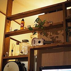DIY/一人暮らし/IKEA/流木/観葉植物...などのインテリア実例 - 2019-02-15 23:23:42