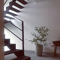 スケルトン階段/アイアン階段/インダストリアルインテリア/観葉植物/土間のある暮らし...などのインテリア実例 - 2020-05-20 08:33:18