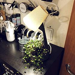 ワイヤープランツ/スタンド/植物のある暮らし/東京のマンション/IKEA...などのインテリア実例 - 2021-04-07 17:31:29