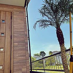 シンボルツリー/フェニックスロベレニー/ヤシの木のある生活/イベント参加中/玄関/入り口のインテリア実例 - 2021-05-07 18:08:04