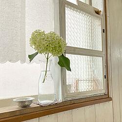 手作り窓枠/アナベル/セリア/棚のインテリア実例 - 2020-05-28 08:58:33