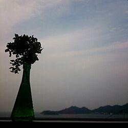 棚/窓からの眺め/あじさいドライ/セリア瓶/セリアのインテリア実例 - 2013-11-02 07:54:57