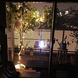 部屋全体/初投稿/照明/観葉植物/ガーデニング...などのインテリア実例 - 2018-01-23 11:07:29