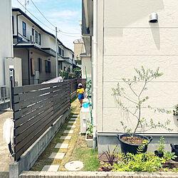 オリーブの鉢植え/庭 DIY/子供と暮らす家/庭/一戸建て...などのインテリア実例 - 2020-06-15 15:09:31