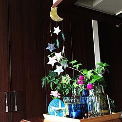 棚/シェルガーランド/kivi/ホルムガード フローラ/琉球ガラス...などのインテリア実例 - 2017-07-13 12:47:54