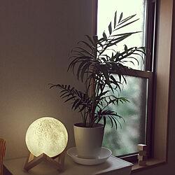リビング/観葉植物/ナチュラル/IKEA/間接照明...などのインテリア実例 - 2018-04-01 17:12:57