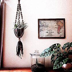 リビング/RC湘南LOVE♡/しゃれとんしゃあ会/みんなとたわむれ隊٩(♥ε♥ )۶/nonちゃん❤︎...などのインテリア実例 - 2014-10-31 20:24:14