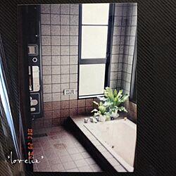 バス/トイレ/お風呂/シャワー/お風呂場/石のタイルのインテリア実例 - 2013-10-09 17:11:30