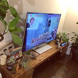 棚/シュレック/モニタリング/コンテスト参加/テレビ台...などのインテリア実例 - 2015-10-02 22:34:52