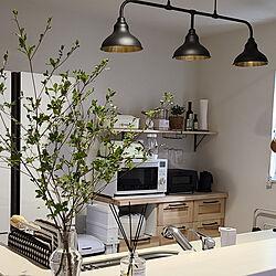 キッチン/IKEA/北欧/観葉植物/棚DIY...などのインテリア実例 - 2021-08-03 00:57:16