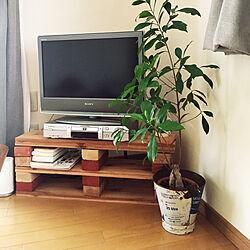 レンガ/テレビボード/DIY/カインズホーム/ナチュラル...などのインテリア実例 - 2018-06-10 15:47:01