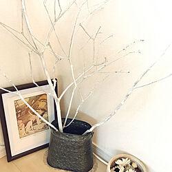 玄関/入り口/猫にもウサギにも見向きもされない木/拾った木もそれなり風でしょw/缶に突っ込んで早数ヶ月/拾って白く塗った木...などのインテリア実例 - 2019-02-08 11:12:34