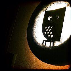 玄関/入り口/ハッピーモチーフ/照明/オーデリック/昭和レトロのインテリア実例 - 2013-11-17 12:35:28