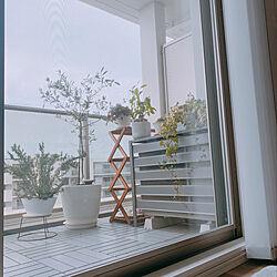 ベランダタイル/観葉植物のある暮らし/アイビー/室外機カバー/山善...などのインテリア実例 - 2021-05-12 06:32:51