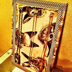 ベッド周り/アクセサリーディスプレイ/手作り・リメイク雑貨のインテリア実例 - 2012-09-29 07:53:18