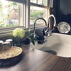 キッチン/植物/上げ下げ窓/IKEA/花のある暮らし...などのインテリア実例 - 2017-07-05 10:50:54