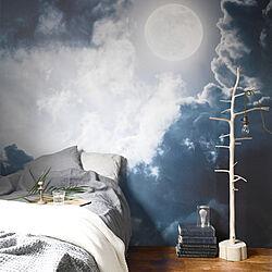 寝室/海外インテリア/夜空/月/オーダーメイド壁紙...などのインテリア実例 - 2018-03-19 19:29:59