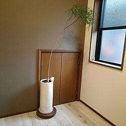 玄関/入り口/観葉植物のある暮らし/ウォルナット無垢材/白い床/すこしづつ。...などのインテリア実例 - 2017-12-24 14:02:07