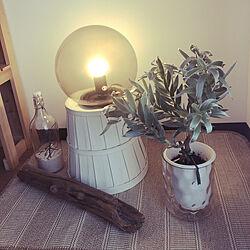 ZARAHOME/ホームセンター/いつもいいねありがとうございます♡/観葉植物/無印良品...などのインテリア実例 - 2019-08-14 16:27:37