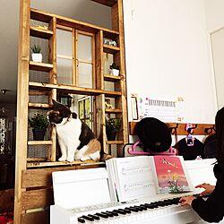 ベッド周り/ピアノ/ねこと暮らす。/猫のいる日常/こどもとネコのいる暮らし...などのインテリア実例 - 2017-06-13 00:12:34