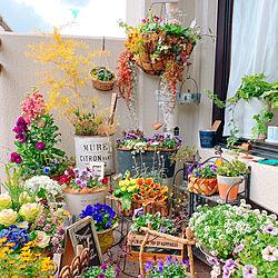 ベッド周り/ベランダは春❤️/至福の時間/グリーンのある暮らし/お花大好き♡...などのインテリア実例 - 2019-02-04 15:04:38