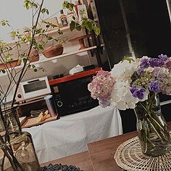 ドウダンツツジの枝/シンプル/3COINS/紫陽花/花のある暮らし...などのインテリア実例 - 2021-06-20 18:23:19