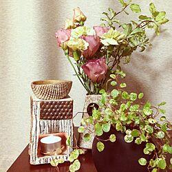 棚/植物/花/アロマポット/陶器のインテリア実例 - 2013-05-24 23:00:24