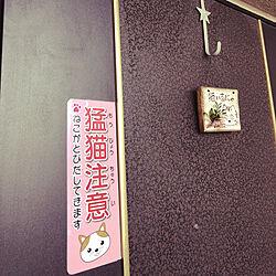 玄関/入り口/玄関プレート/猛猫注意!/猫との共同生活 安全対策のインテリア実例 - 2018-05-05 15:26:06