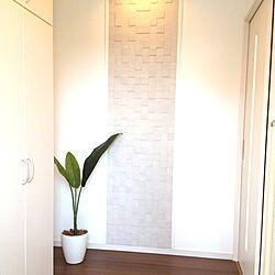 玄関/入り口/室内グリーン/植物/観葉植物のインテリア実例 - 2013-04-19 07:18:43