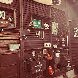 棚/木のある暮らし/植物のある暮らし/ミンネ/ペイントリメイク...などのインテリア実例 - 2021-09-24 20:39:17
