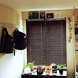 ベッド周り/ニトリ/観葉植物/和室を改造/和室...などのインテリア実例 - 2016-07-01 18:01:03