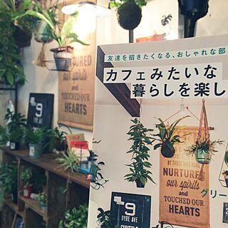 女性家族暮らし、tシャツ リメイクOverviewやグリーン編や植物や水苔などに関するmayumiさんの実例写真