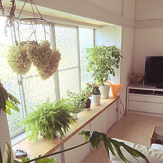 和室を改造の人気の写真(RoomNo.3193630)