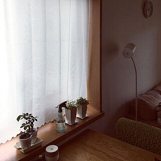 女性41歳の家族暮らし2LDK、せまいリビングに関するbebeさんの実例写真