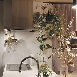 ミックスインテリア/キッチン/ドライフラワー/ドライフラワーのある暮らし/植物のある暮らし...などのインテリア実例 - 2019-03-11 17:28:28