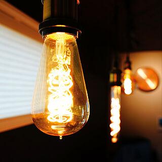 エジソン電球/エジソンバルブ/ダクトレール照明/照明/一条工務店...などのインテリア実例 - 2020-04-30 14:40:16