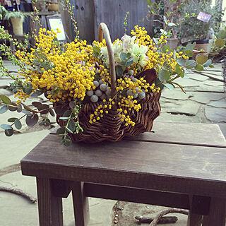 ガーデニング/植物/花が好き♡/好きな花♪/ナチュラル...などのインテリア実例 - 2020-02-23 15:56:27