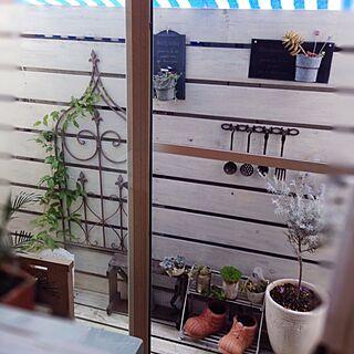 部屋全体/ベランダガーデン/リビングからのウッドデッキ/リビングからの眺め/DIY板壁...などのインテリア実例 - 2016-02-28 13:18:02