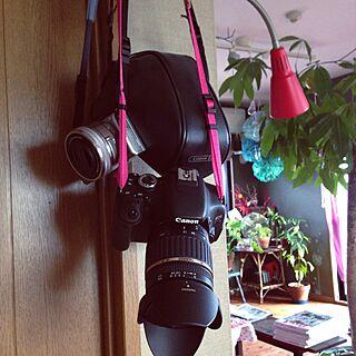 女性家族暮らし、カメラ女子に関するakaneさんの実例写真